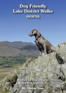Image of book cover - dog posing on rock with Blencathra in the background